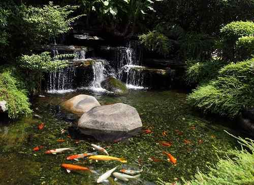 Top 3 easiest to build and cheapest diy koi pond filters for Build your own koi pond filter