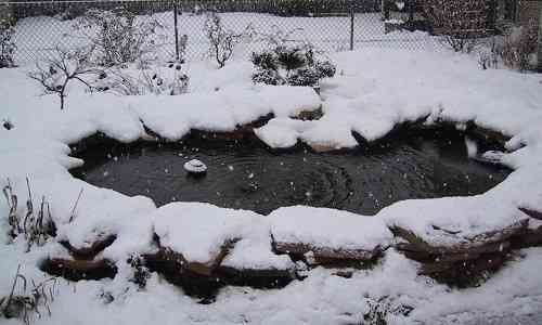 pond heater for winter tips