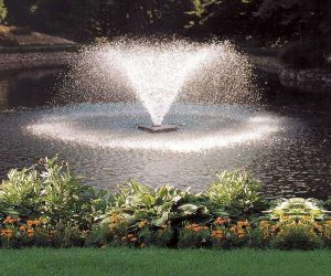 pond aeration system feature