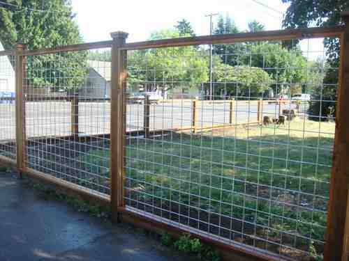 cedar posts and barbed wires fences