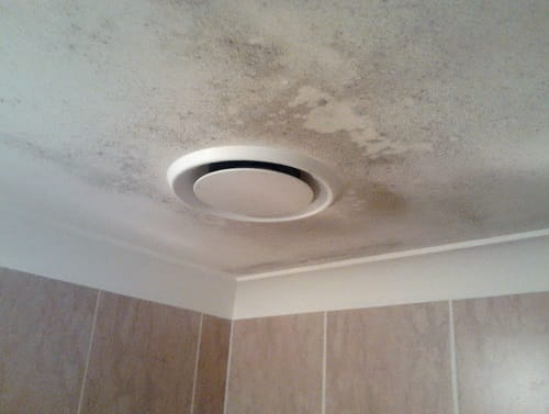Mold Removal Bathroom Ceiling | Easiest Tips and DIY Guides