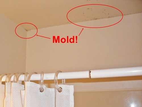 Mold Removal Bathroom Ceiling Easiest Tips And Diy Guides