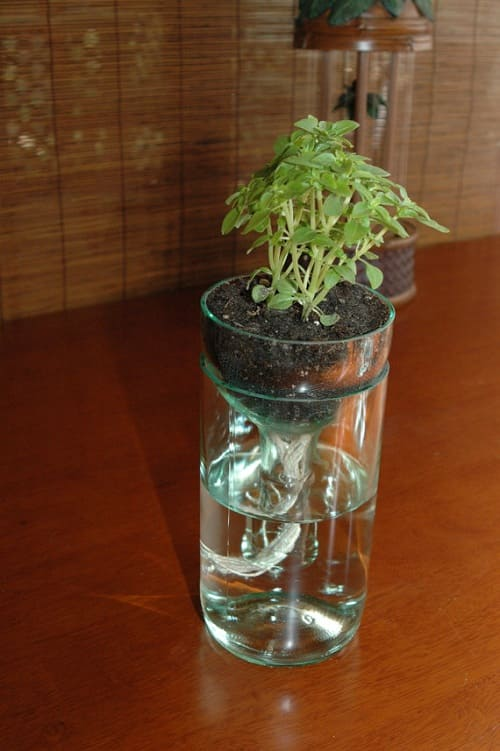 self watering planter 2-min