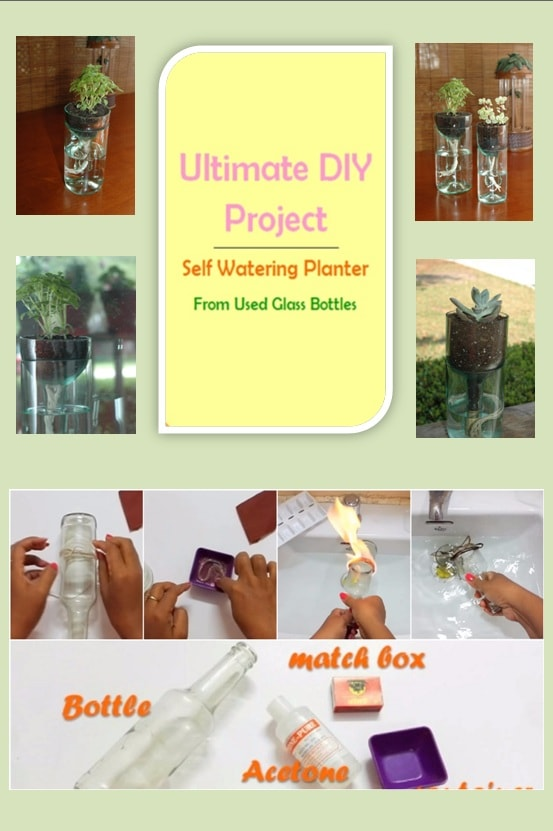 Ultimate DIY Project: Self Watering Planter From Used Glass Bottles