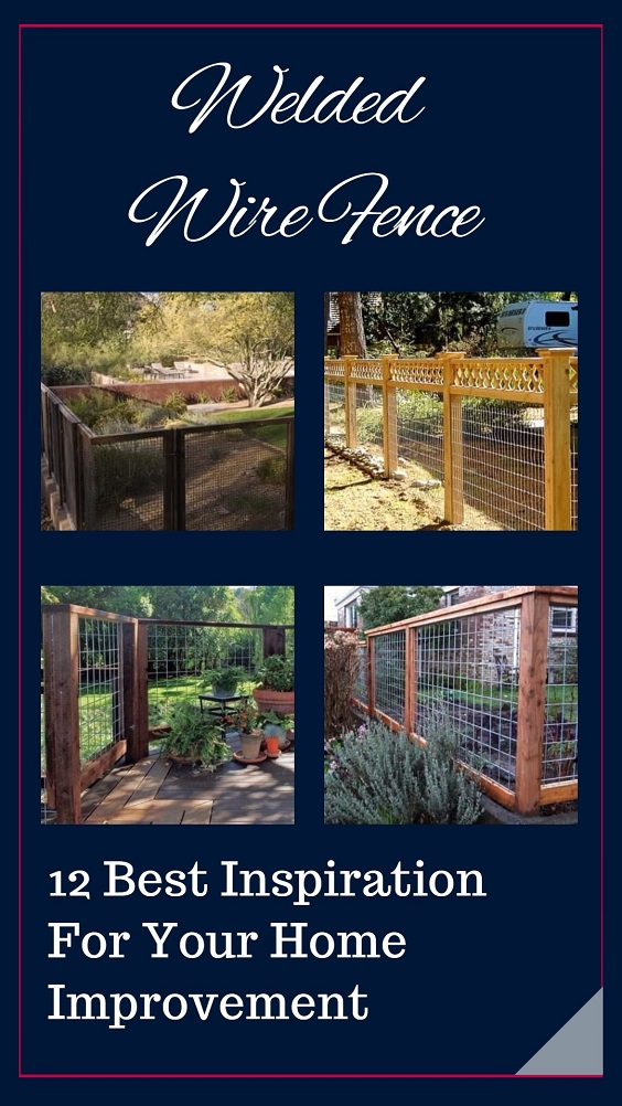 Welded Wire Fence: 12 Best Inspiration For Your Home Improvement