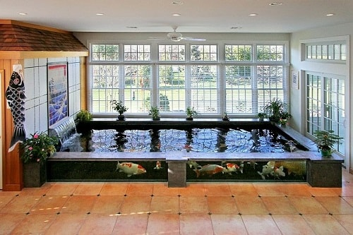 Above Ground Koi Pond with Window 10-min