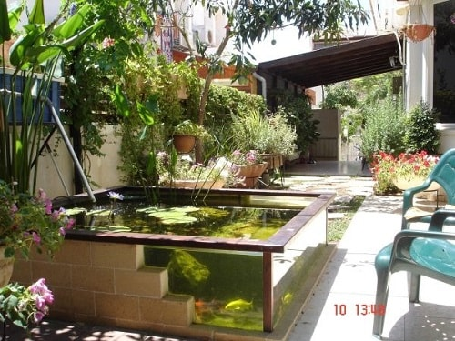 20 most clever above ground koi pond with window ideas for Above ground fish pond ideas