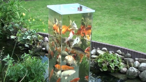 Above Ground Koi Pond with Window 20-min