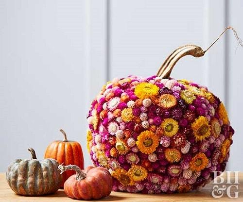 no carving pumpkin ideas 15-min
