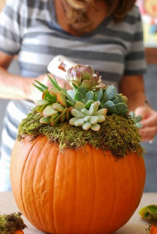 no carving pumpkin ideas 6-min