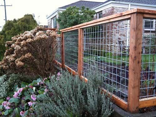 Welded Wire Fence: 12 Best Inspiration For Your Home ...