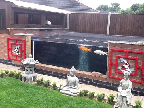 Above Ground Koi Pond with Window 28-min