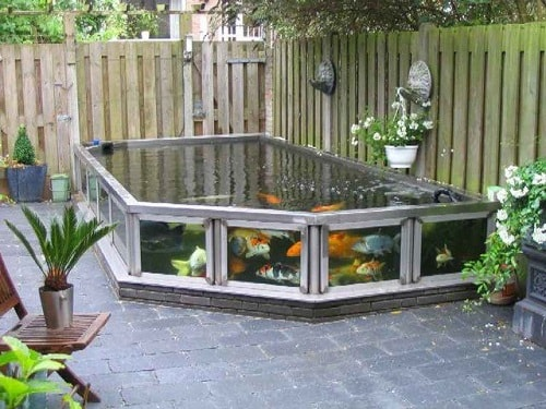 20 most clever above ground koi pond with window ideas for Fish pond decorations