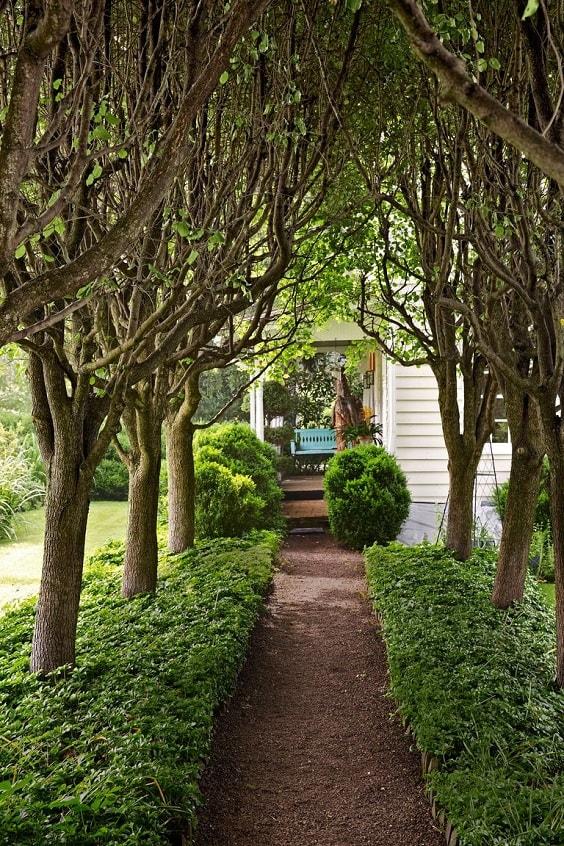 diy patio landscaping ideas 2-min