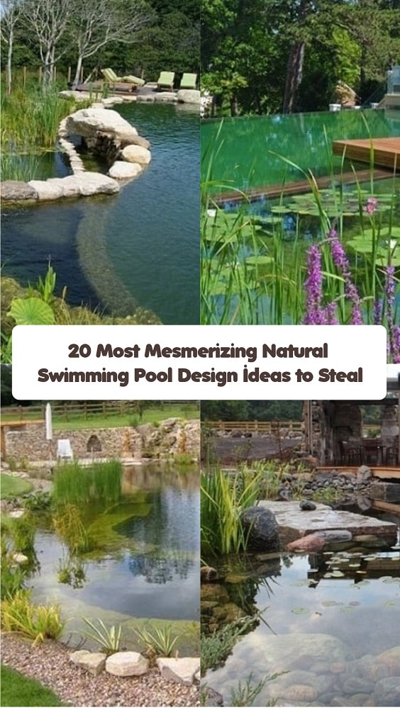 Natural Swimming Pool Design-min