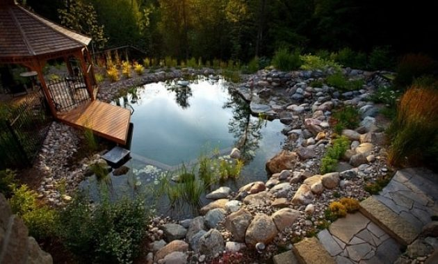 natural swimming pool design 1-min