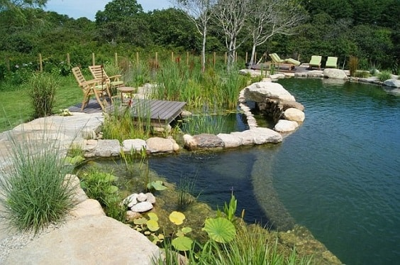 20 Most Mesmerizing Natural Swimming Pool Design Ideas to Steal