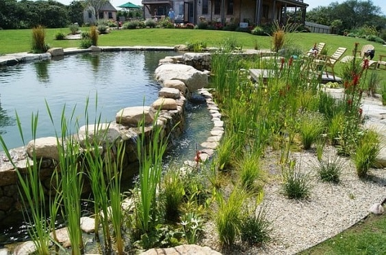 natural swimming pool design 15-min