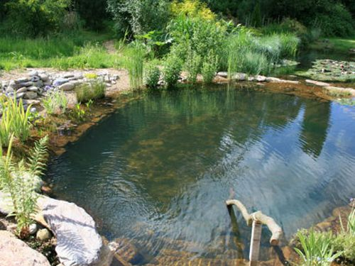 natural swimming pool design 16-min