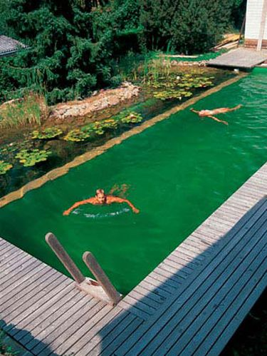 natural swimming pool design 18-min
