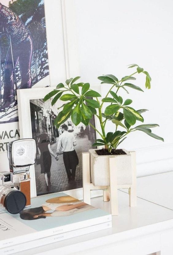 diy concrete planter 17-min