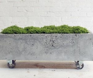 diy concrete planter 2-min
