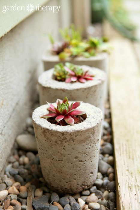 diy concrete planter 6-min