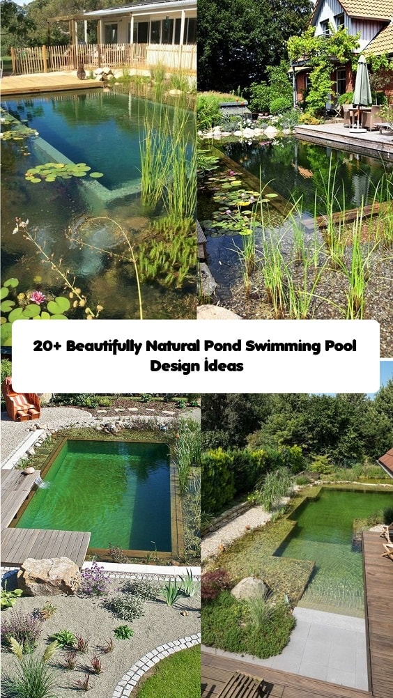 Pond Swimming Pool-min