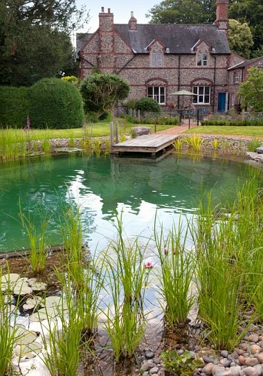 pond swimming pool 12
