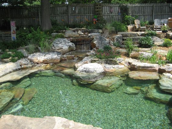 pond swimming pool 15