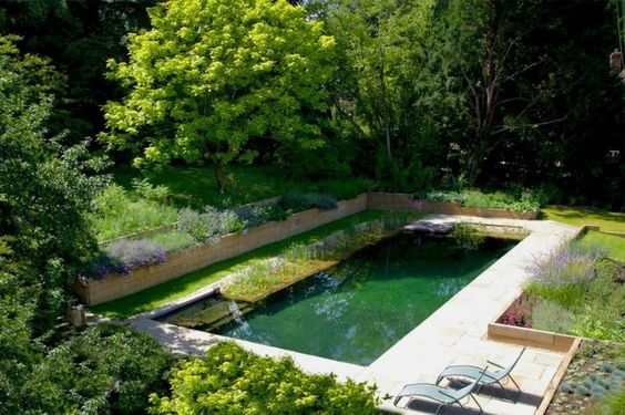 pond swimming pool 20