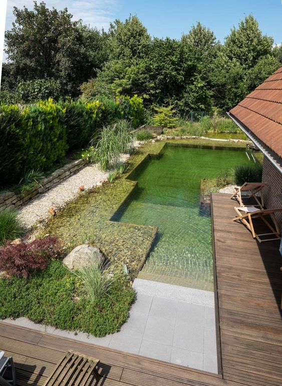 pond swimming pool 7