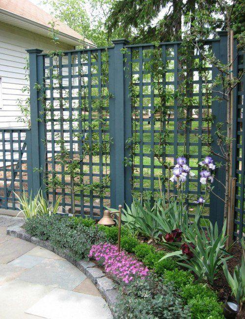 lattice fence ideas 8