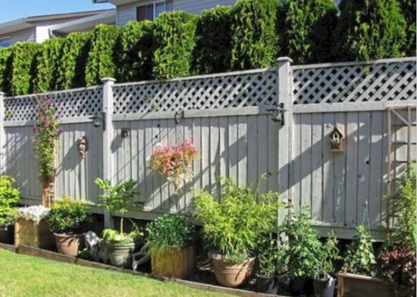 lattice fence ideas feature