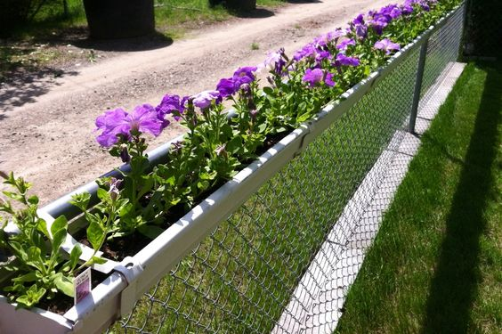 chainlink fence ideas 18