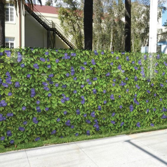 chainlink fence ideas 2