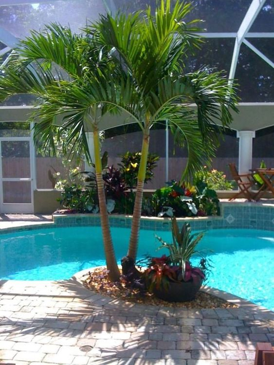 swimming pool landscaping 1