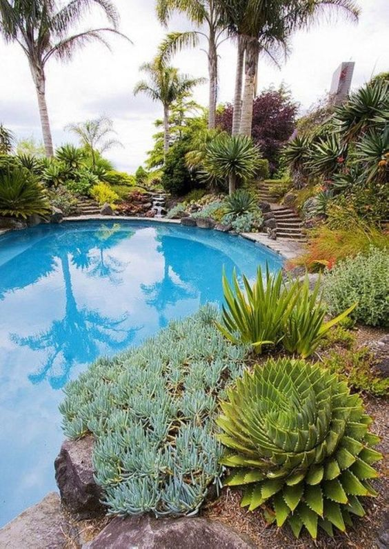 swimming pool landscaping 4