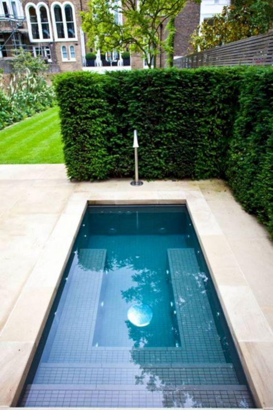 Small Swimming Pool: Narrow Rectangular Pool