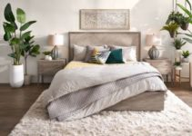 Bedroom Plants Ideas: 25+ Fresh & Stylish Decors You'll Adore