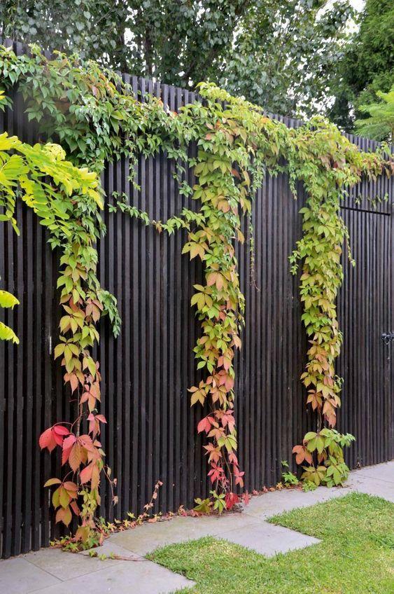 black fence ideas 14