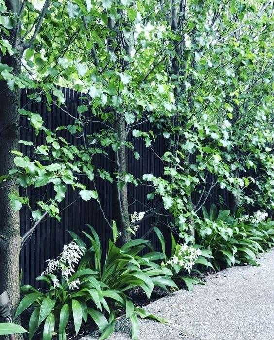 black fence ideas 15