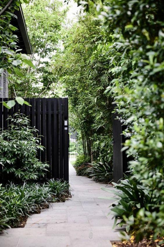 Black Fence Ideas: Vertical Wood Fence
