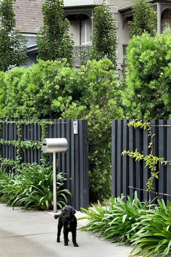 Black Fence Ideas: Catchy Earthy Decor