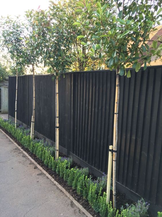 black fence ideas 9
