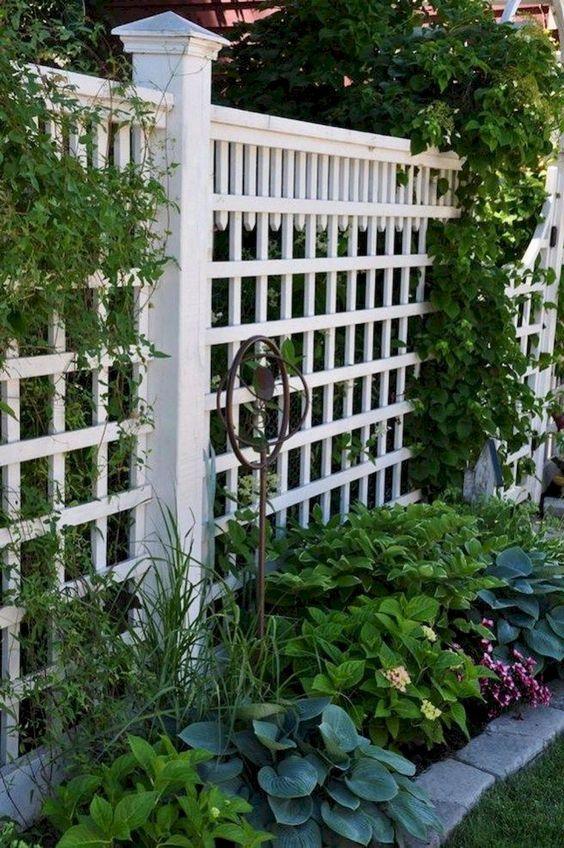 White Fence Ideas: Elegant Lattice Fence
