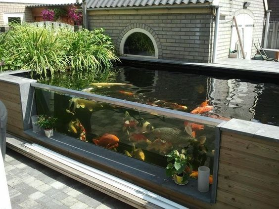 Backyard Water Feature 20