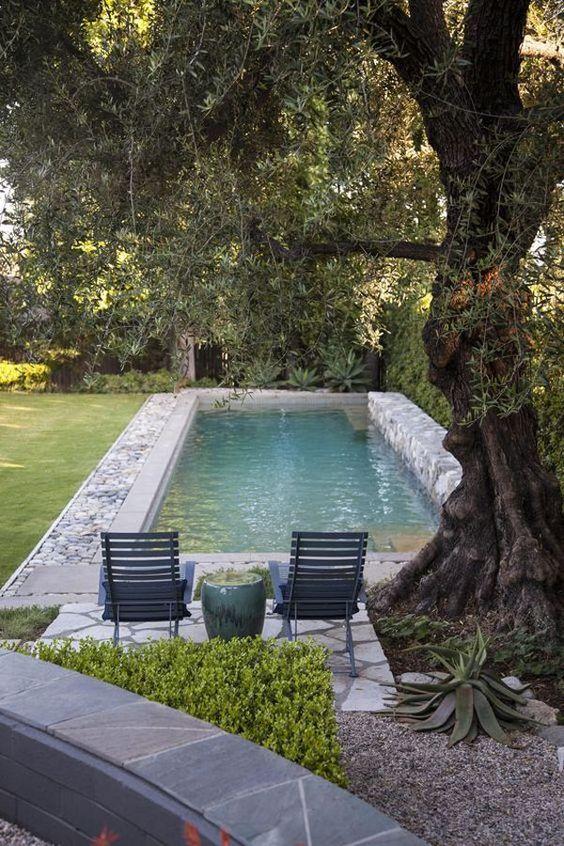 Backyard Water Feature: Fun Swimming Pool