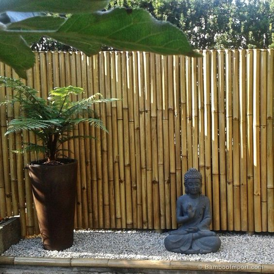 bamboo fence ideas 13