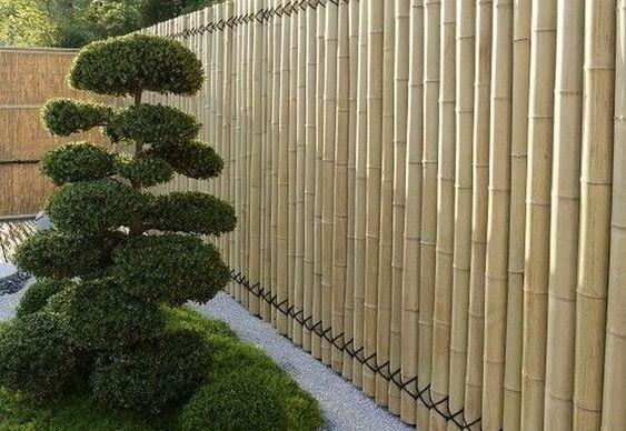bamboo fence ideas 25